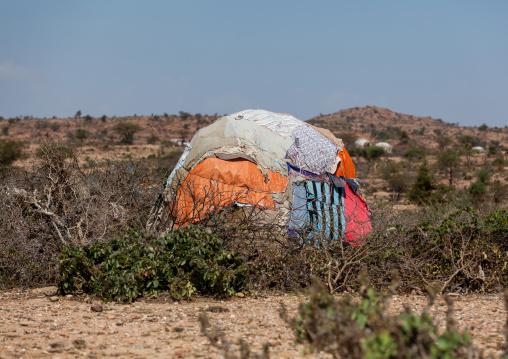 A somali hut called aqal, Woqooyi Galbeed region, Hargeisa, Somaliland