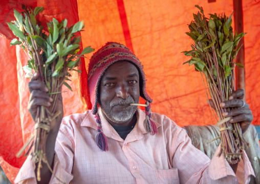 Somali khat seller in the market, Woqooyi Galbeed region, Hargeisa, Somaliland