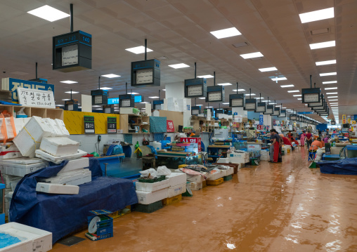 New area of noryangjin fisheries wholesale market, National capital area, Seoul, South korea