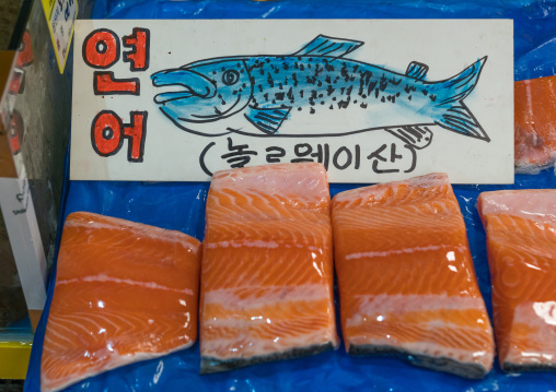 Salmon in noryangjin fisheries wholesale market, National capital area, Seoul, South korea