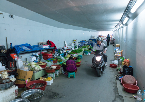 Vegetables market in a tunnel leading to the fish market, National capital area, Seoul, South korea