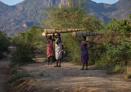 Larim tribe women carrying thatch used to make the roofs of the houses, Boya Mountains, Imatong, South Sudan
