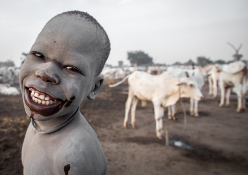 Smiling Mundari tribe boy covered in ash taking care of long horns cows in a camp, Central Equatoria, Terekeka, South Sudan