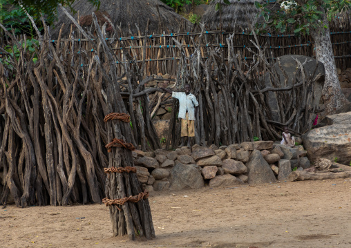 Generation pole erected during initiation ceremonies in Lotuko tribe, Central Equatoria, Illeu, South Sudan