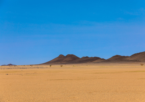 Desert landscape, Northern State, Bayuda desert, Sudan