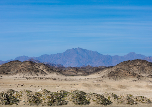 Arid landscape, Red Sea State, Port Sudan, Sudan