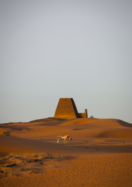 Sudan, Kush, Meroe, man and his camel in front of the pyramids and tombs in royal cemetery
