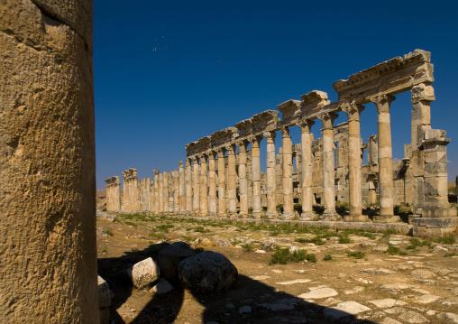 Columned Ancient Street, Apamea, Hama Governorate, Syria