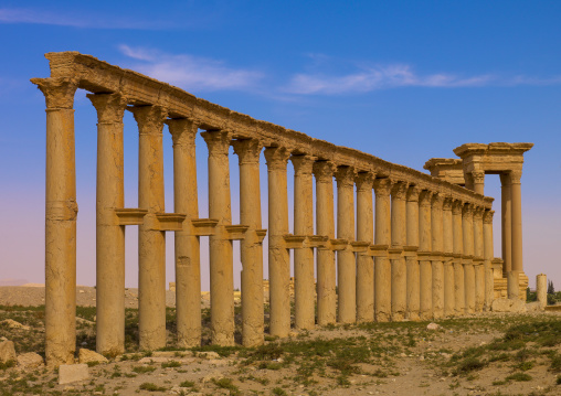 Monumental Arch And Colonnaded Street In The Ancient Roman City, Palmyra, Syrian Desert, Syria