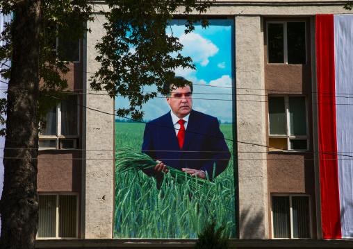An oversized photo of Emomali Rahmon  President of Tajikistan on a building, Central Asia, Dushanbe, Tajikistan