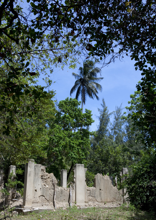 Pujini ruins, Pemba, Tanzania