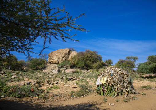Tanzania, Serengeti Plateau, Lake Eyasi, hadzabe tribe traditional huts made with sisal agaves in a village