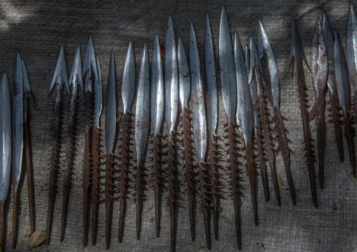 Tanzania, Serengeti Plateau, Lake Eyasi, arrows made by datogas people for hadzabe hunters