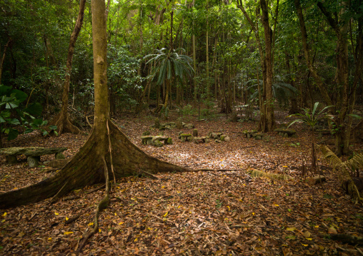 Amelbati site of former cannibal ceremonies, Malampa Province, Malekula Island, Vanuatu