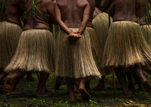 Women with grass skirts performing a Rom dance, Ambrym island, Olal, Vanuatu