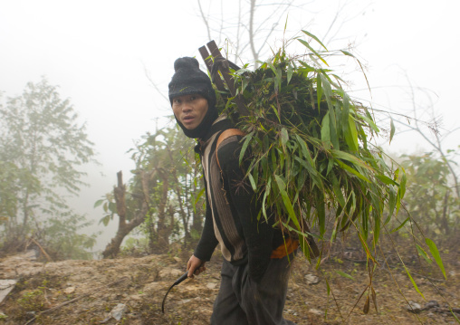 Man of the flower hmong tribe carrying leaves on his back, Sapa, Vietnam