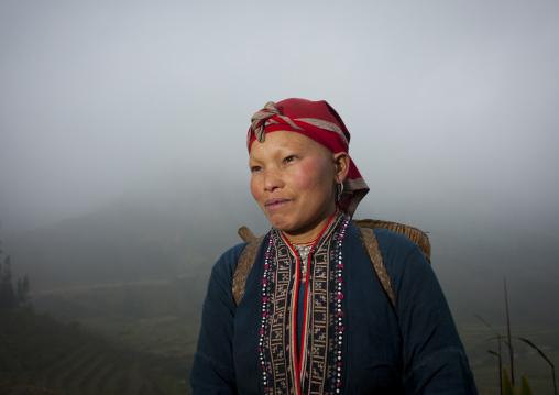 Flower hmong woman carrying a basket on her back, Sapa, Vietnam