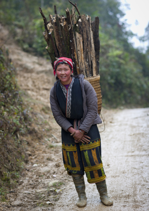 Red dzao woman carrying wood in a basket on her back, Sapa, Vietnam