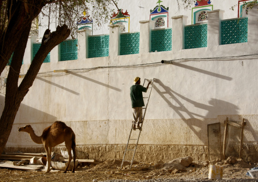 Man On A Ladder Painting The Wall Of A House Decorated With Colourful Paintings, And Camel Standing By, Yemen