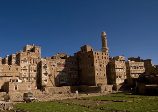 Sanaa Gardens In Old Town Surrounded By Storeyed Tower Houses Built Of Rammed Earth, Sanaa, Yemen